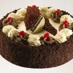 עוגת גבינה שוקולד לבן ואוראו